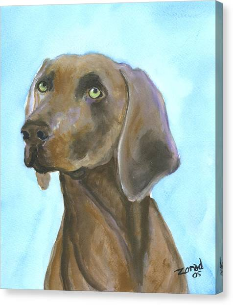 Weimarainer Dog Art Canvas Print by Mary Jo Zorad