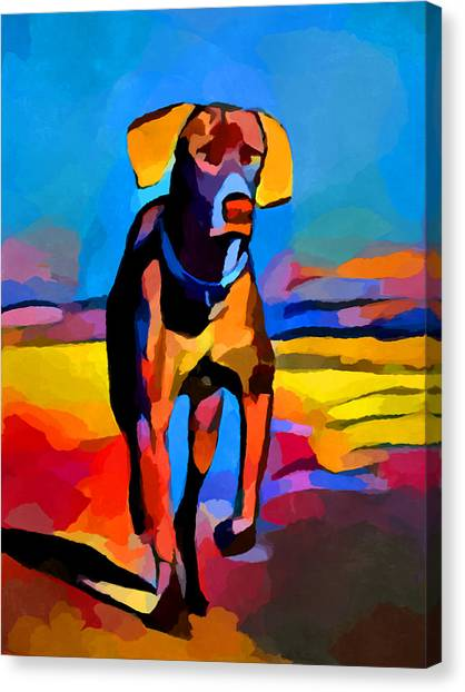 Weimaraners Canvas Print - Weimaraner by Chris Butler