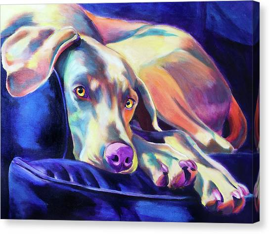 Weimaraners Canvas Print - Weimaraner - Finnegan by Alicia VanNoy Call