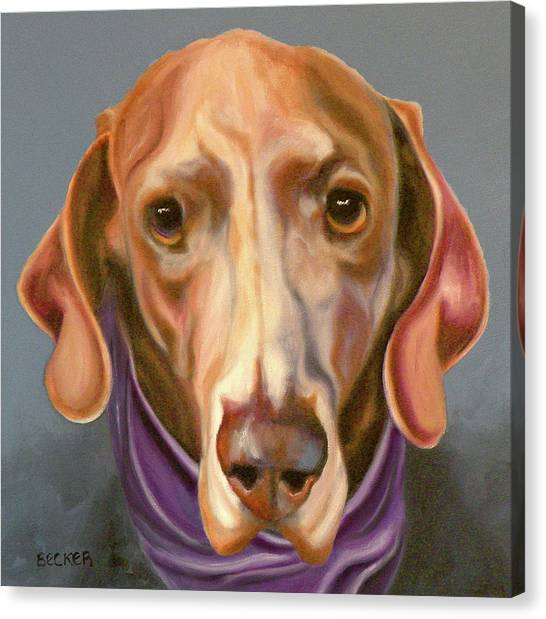 Weimaraners Canvas Print - Weimaraner With Kerchief by Susan A Becker