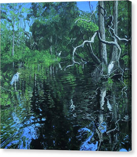 Wekewa River Canvas Print