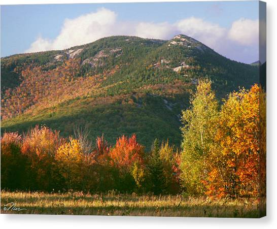 Welch And Dickey Mountains Canvas Print