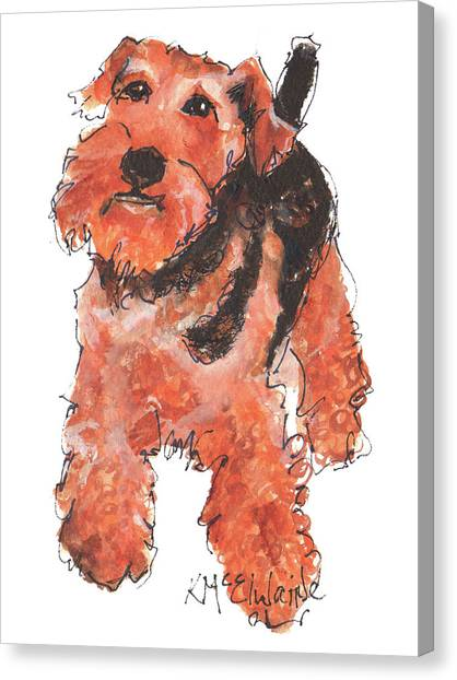 Welsh Terrier Or Schnauzer Watercolor Painting By Kmcelwaine Canvas Print