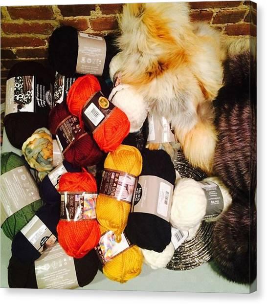 Supplies Canvas Print - Went A Little Bit Crazy Buying Yarn 😆 by Emilia Novitzky