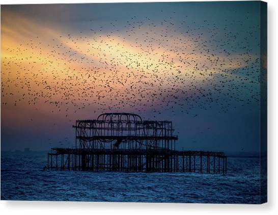 Canvas Print featuring the photograph West Pier Murmuration by Chris Lord