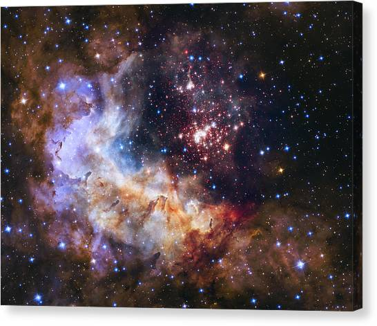 Westerlund 2 - Hubble 25th Anniversary Image Canvas Print