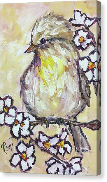 Flycatchers Canvas Print - Western Kingbird Chick  by Roxy Rich