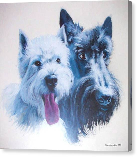 Westie And Scotty Dogs Canvas Print