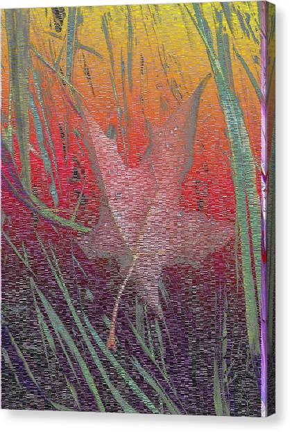 Rain Canvas Print - Wet And Wild Autumn by Tim Allen