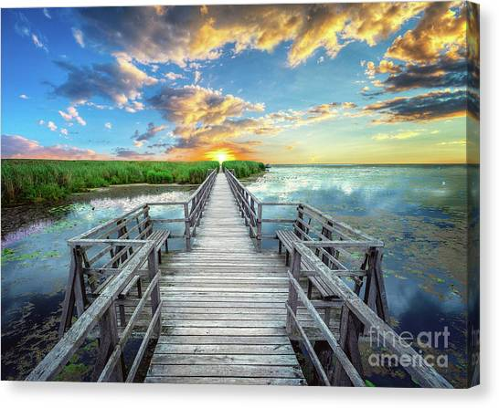 Wetland Marsh Sunrise Treasure Coast Florida Boardwalk A1 Canvas Print