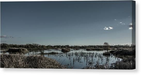 Wetlands Desaturated  Canvas Print