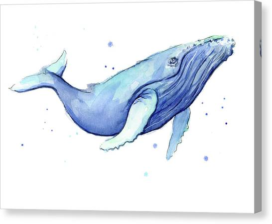 Blue Whales Canvas Print - Whale Watercolor Humpback by Olga Shvartsur