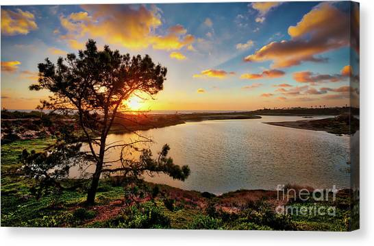 What A Glow At The Batiquitos Lagoon Canvas Print