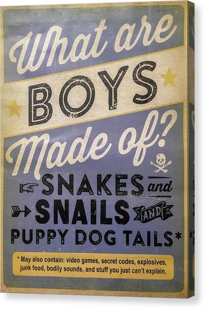 Rustic Canvas Print - What Are Boys Made Of Signage Art by Reid Callaway