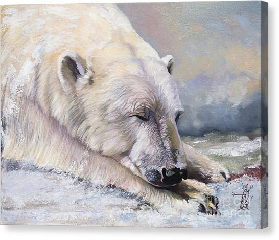 What Do Polar Bears Dream Of Canvas Print