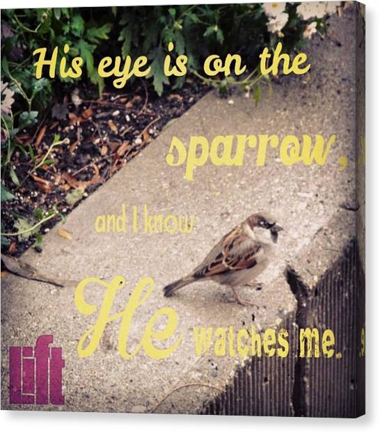 Design Canvas Print - What Is The Price Of Two Sparrows-one by LIFT Women's Ministry designs --by Julie Hurttgam