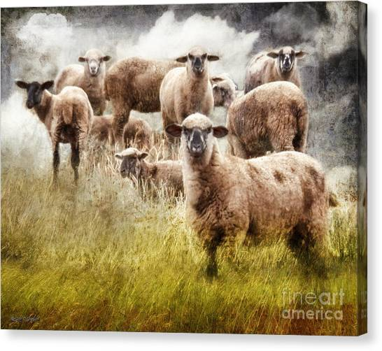 Canvas Print featuring the photograph What You Lookin' At? by Rhonda Strickland