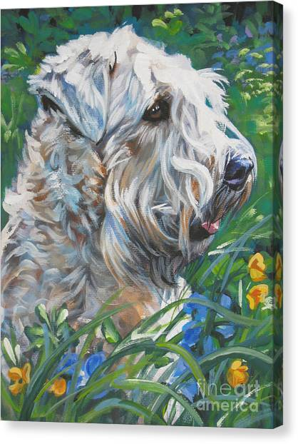 Wheaten Terrier Canvas Print