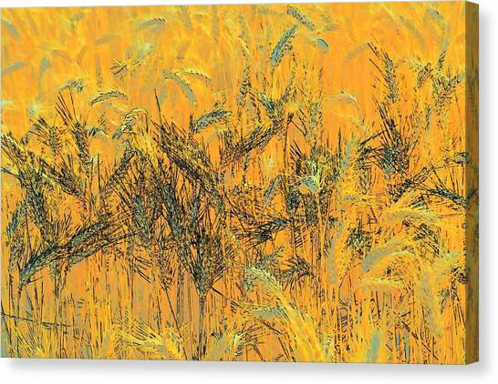 Wheatscape 6343 Canvas Print