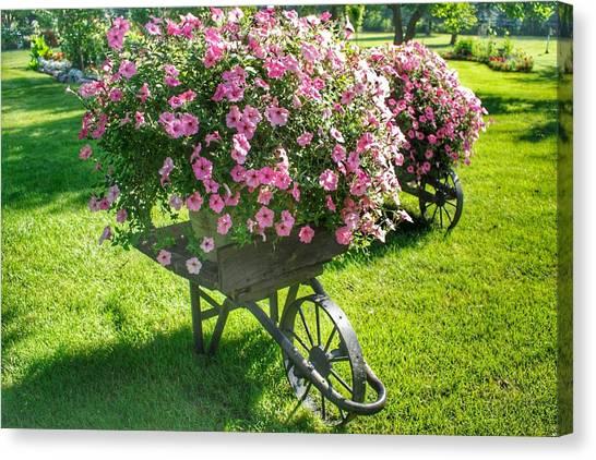 2004 - Wheel Barrow Full Of Flowers Canvas Print
