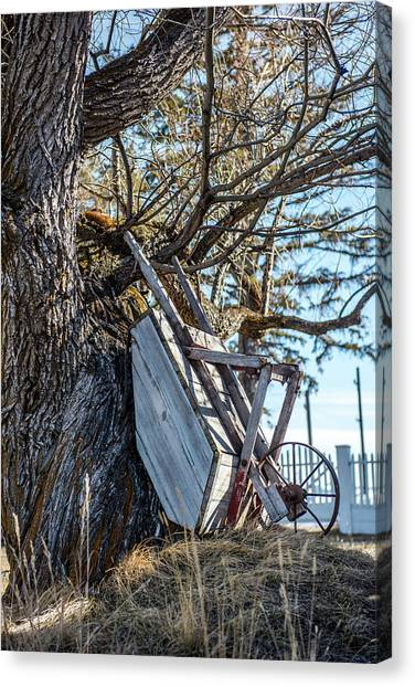 Wheel Barrows Canvas Print - Wheel Barrow by Paul Freidlund