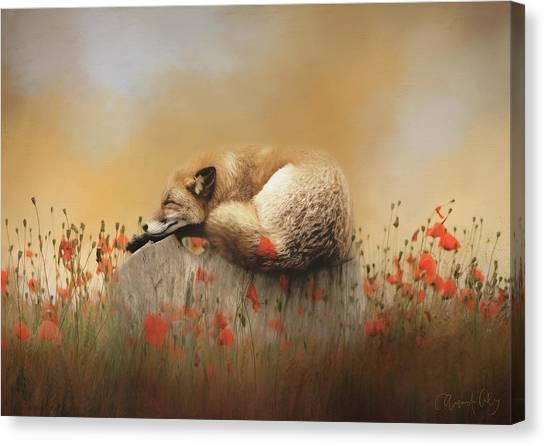 Canvas Print - When Foxes Dream by Amanda Lakey