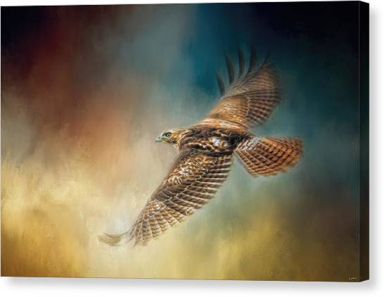 When The Redtail Flies At Sunset Hawk Art Canvas Print