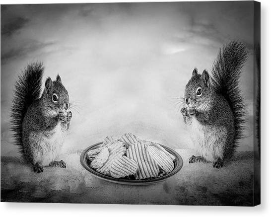 Squirrels Canvas Print - When You Lose Your Nuts There Is Always Chips by Bob Orsillo