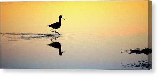Canvas Print featuring the photograph Where Is Dinner? by Quality HDR Photography