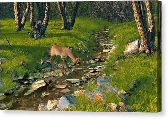 Where The Buck Stops Canvas Print