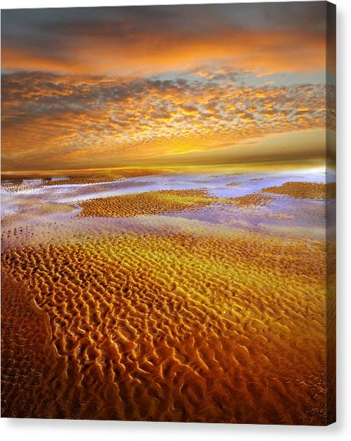 Low Tide Canvas Print - Where The Heart Is by Jacky Gerritsen