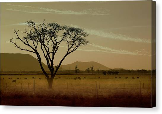 Rural Landscapes Canvas Print - Wherever I May Roam by Holly Kempe