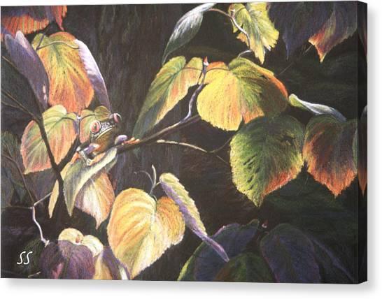 Which Hopper? Canvas Print