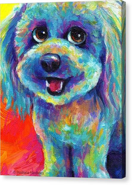 Animals Canvas Print - Whimsical Labradoodle Painting By by Svetlana Novikova