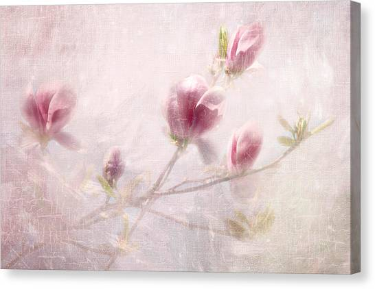 Whisper Of Spring Canvas Print