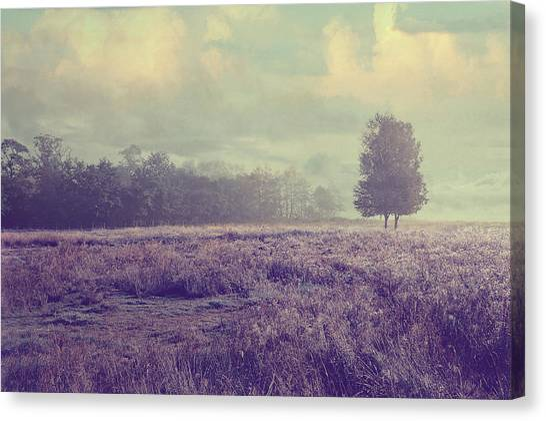 Jenny Lake Canvas Print - Whispering Fields by Jenny Rainbow