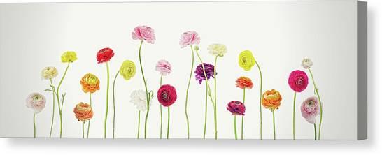 Susann Serfezi Canvas Print - Whispering Spring by AugenWerk Susann Serfezi