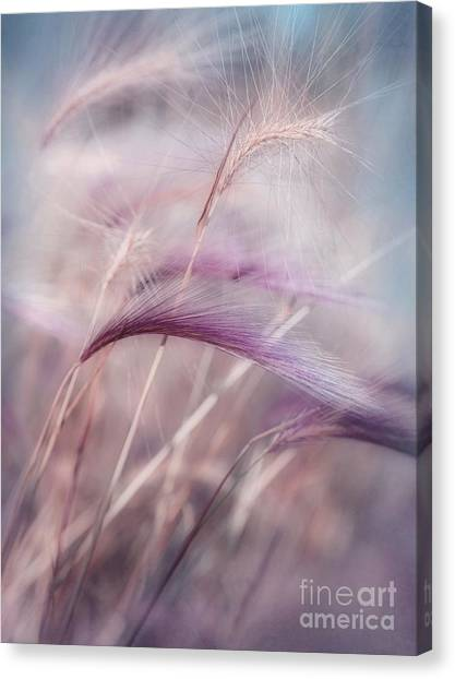Plant Canvas Print - Whispers In The Wind by Priska Wettstein