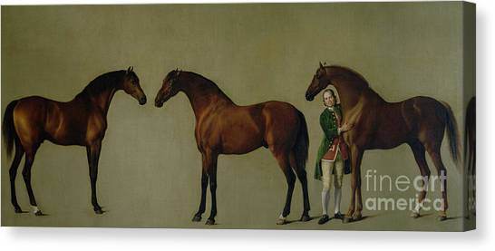 Groom Canvas Print - Whistlejacket And Two Other Stallions With Simon Cobb, The Groom by George Stubbs