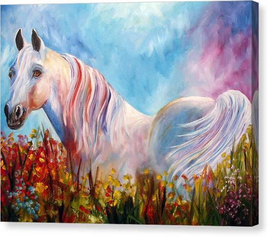 White Arabian Horse Canvas Print by Mary Jo Zorad