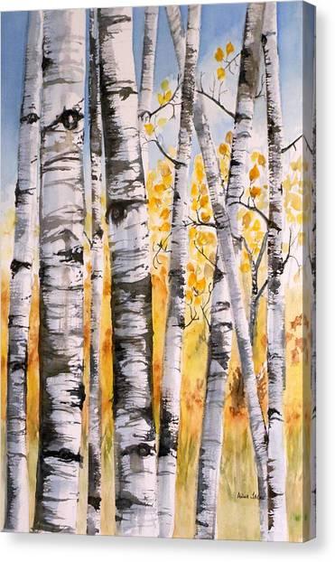 White Birch Meadow Canvas Print