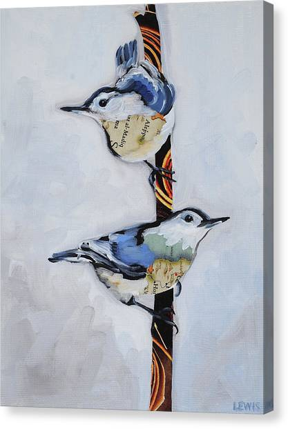 White Breasted Nuthatch Canvas Print by Anne Lewis