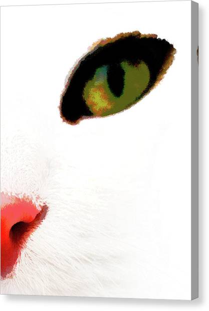 White Cats Face Canvas Print