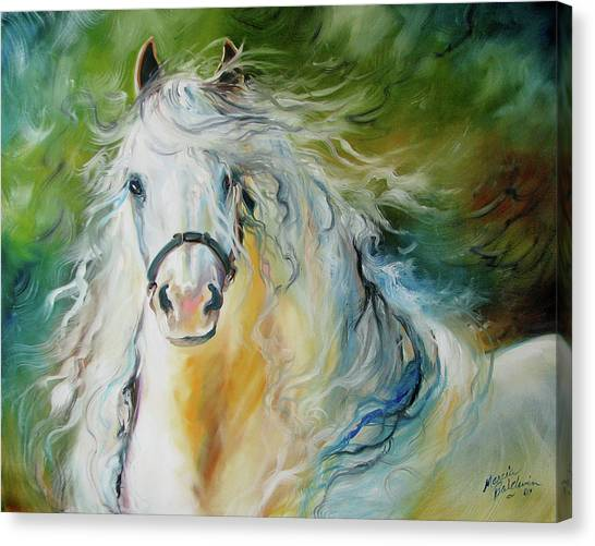White Cloud The Andalusian Stallion Canvas Print