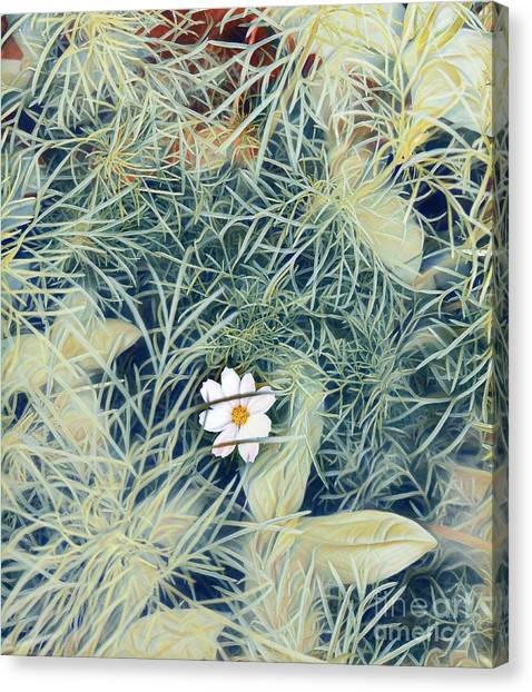 White Cosmo Canvas Print