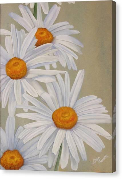 White Daisies Canvas Print