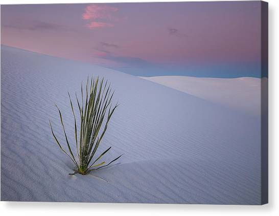 White Sand Canvas Print - White Dunes by Edgars Erglis