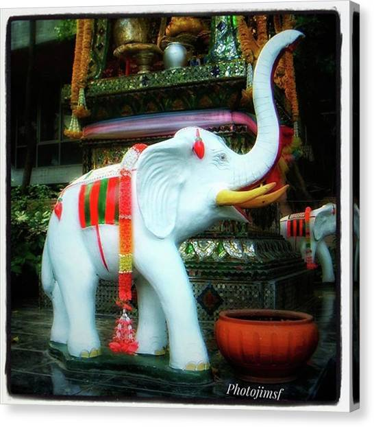 Canvas Print featuring the photograph White Elephant. Meaning A Big Expensive by Mr Photojimsf