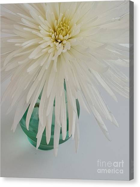 White Flower In A Vase By Jasna Gopic Canvas Print