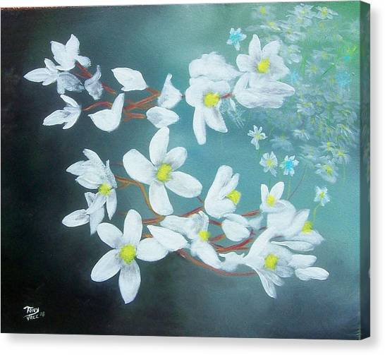 White Flowers Canvas Print by Tony Rodriguez